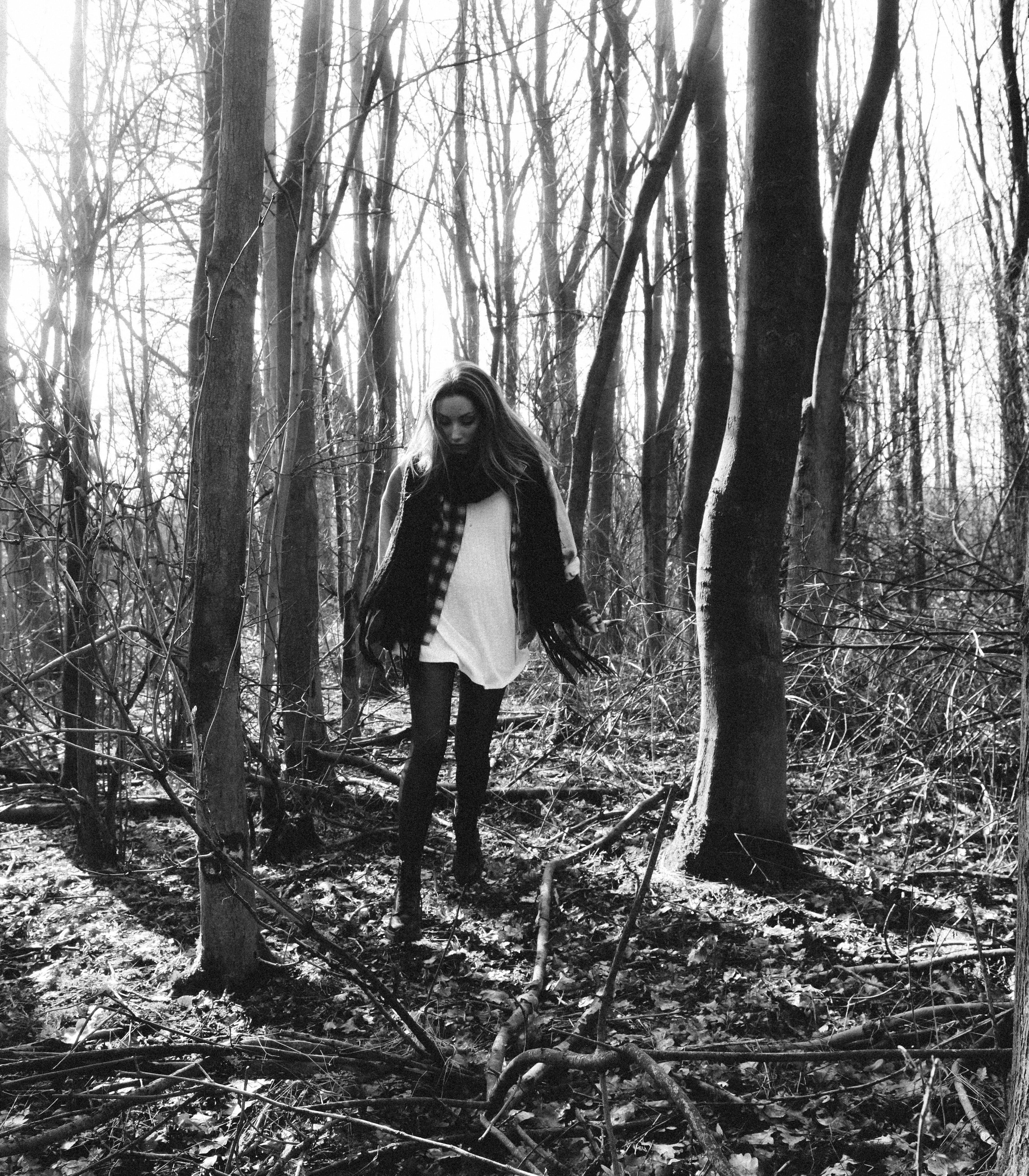 forest-1388.jpg